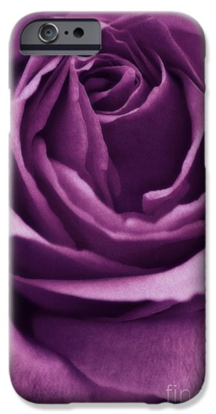 Roses iPhone Cases - Romance III iPhone Case by Angela Doelling AD DESIGN Photo and PhotoArt