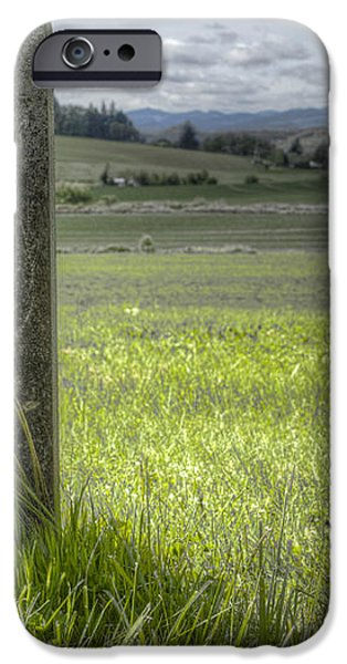 Room with a View iPhone Case by Jean Noren