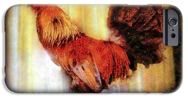 Barnyard Animals iPhone Cases - Rooster early morning light iPhone Case by Janine Riley