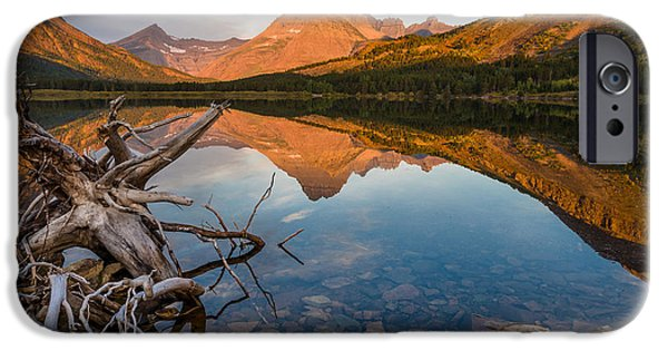 Tree Roots iPhone Cases - Roots and Reflections on Swiftcurrent Lake iPhone Case by Greg Nyquist