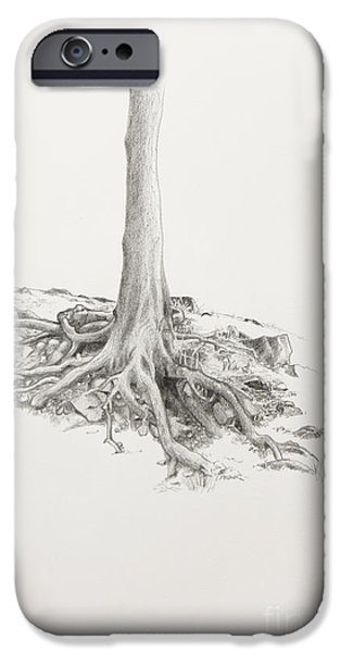 Tree Roots Drawings iPhone Cases - Roots iPhone Case by Cheryl E Adams