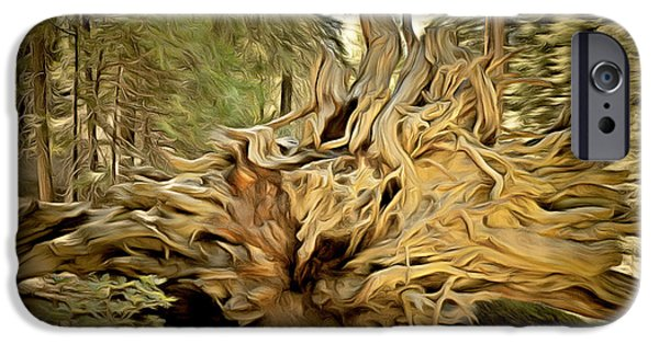 Tree Roots Paintings iPhone Cases - Roots Of A Fallen Giant Sequoia iPhone Case by Barbara Snyder