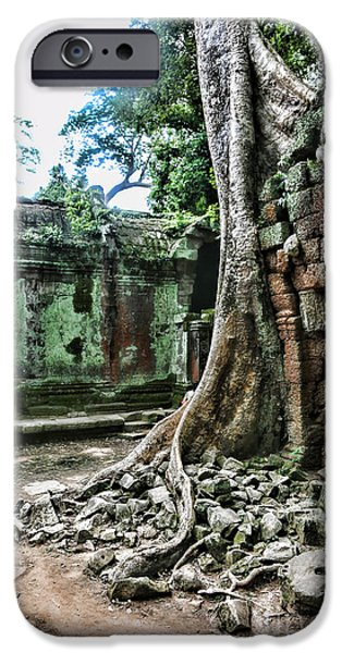 Tree Roots iPhone Cases - Roots Ta Prohm IV iPhone Case by Chuck Kuhn