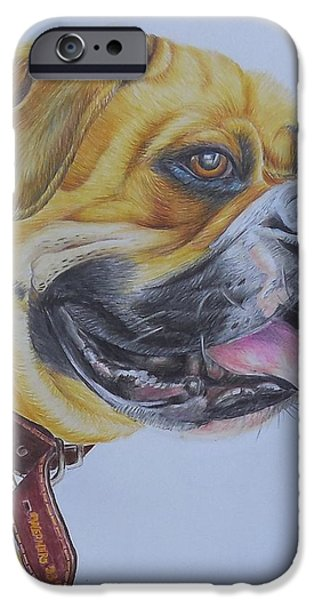 Boxer iPhone Cases - Roscoe the Boxer iPhone Case by Golanv  Waya