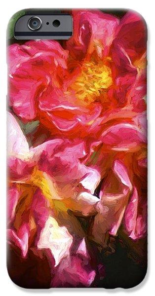 Rose 115 iPhone Case by Pamela Cooper