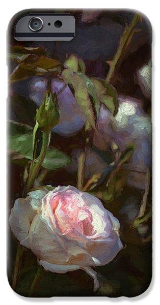 Rose 122 iPhone Case by Pamela Cooper