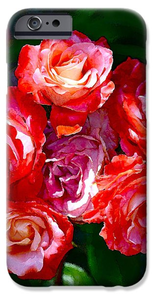 Rose 124 iPhone Case by Pamela Cooper