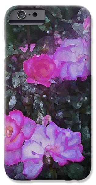 Rose 189 iPhone Case by Pamela Cooper