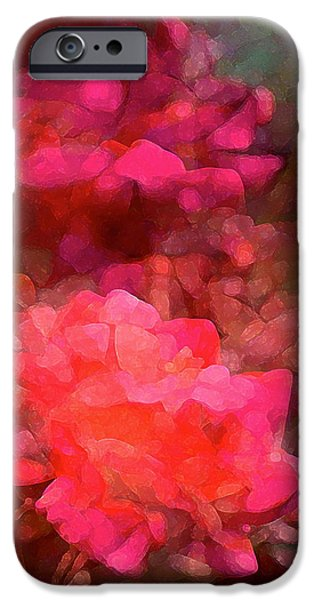 Rose 198 iPhone Case by Pamela Cooper