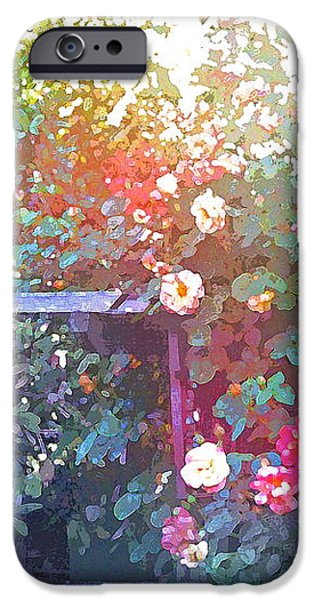 Rose 205 iPhone Case by Pamela Cooper