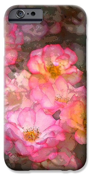 Rose 210 iPhone Case by Pamela Cooper
