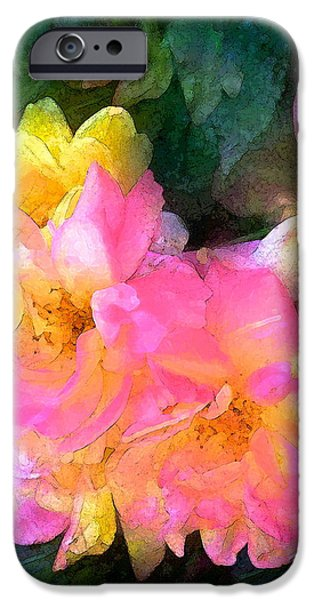 Rose 211 iPhone Case by Pamela Cooper