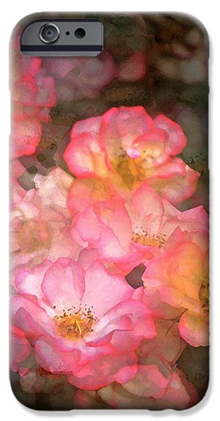 Rose 212 iPhone Case by Pamela Cooper