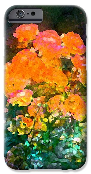 Rose 215 iPhone Case by Pamela Cooper