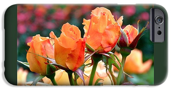 Rose iPhone Cases - Rose Bunch iPhone Case by Rona Black