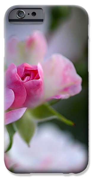 Rose Emergent iPhone Case by Rona Black