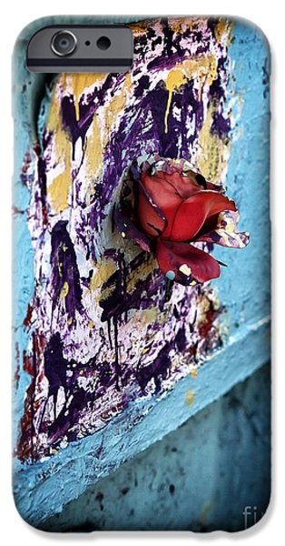 Rose for the Dead iPhone Case by John Rizzuto