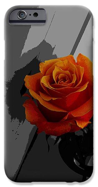 Secret Admirer iPhone Cases - Rose II - Secret Admirer iPhone Case by Xueling Zou
