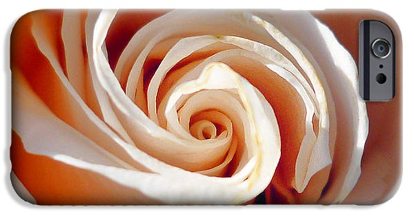 Rose iPhone Cases - Rose Magnificent Spiral  iPhone Case by Irina Sztukowski