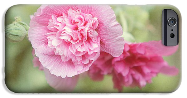Althea iPhone Cases - Rose of Sharon iPhone Case by Kay Pickens