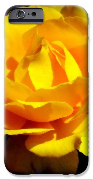 ROSE of SUN iPhone Case by KAREN WILES