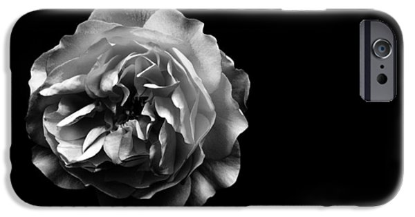Rose iPhone Cases - Rose on Black iPhone Case by Mark Rogan