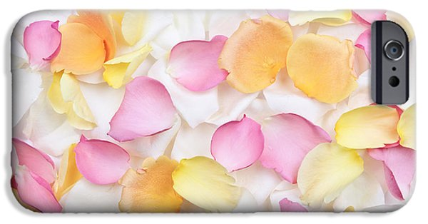 Botanical Photographs iPhone Cases - Rose petals background iPhone Case by Elena Elisseeva