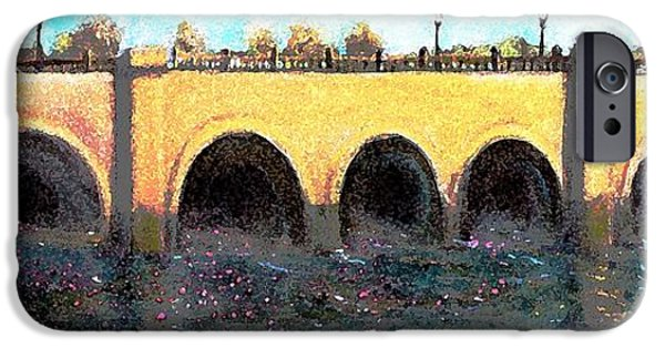Charles River iPhone Cases - Rose Petals Floating Under the Moody Street Bridge iPhone Case by Rita Brown