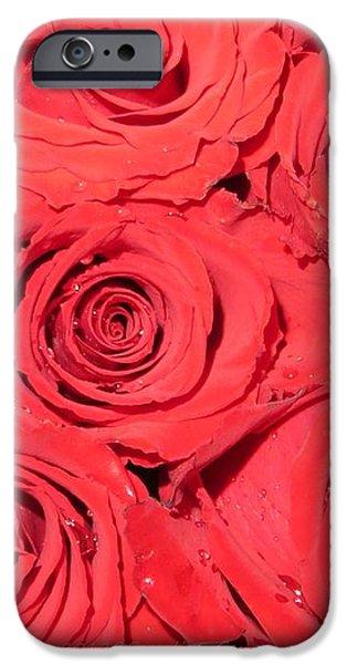 Rose swirls iPhone Case by Sonali Gangane