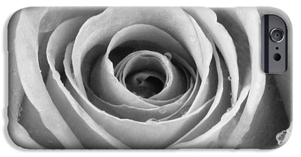 Design iPhone Cases - Rose with Water Droplets - Black and White iPhone Case by Natalie Kinnear
