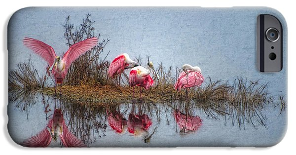 Abstract Digital Art iPhone Cases - Roseate Spoonbills at Rest iPhone Case by Lianne Schneider