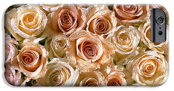 Abstract Digital Pyrography iPhone Cases - Roses 1 iPhone Case by Mauro Celotti