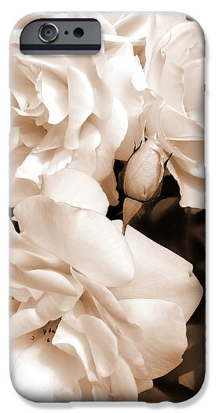 Sepia Flowers iPhone Cases - Roses in Sepia Monochrome iPhone Case by Jennie Marie Schell