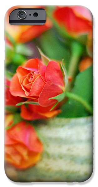 Roses iPhone Case by Lisa  Phillips