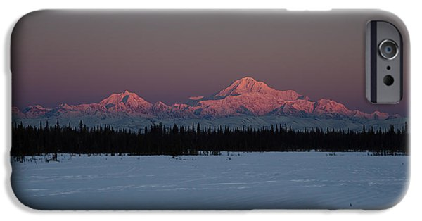 Winterscape iPhone Cases - Rosewood iPhone Case by Ed Boudreau