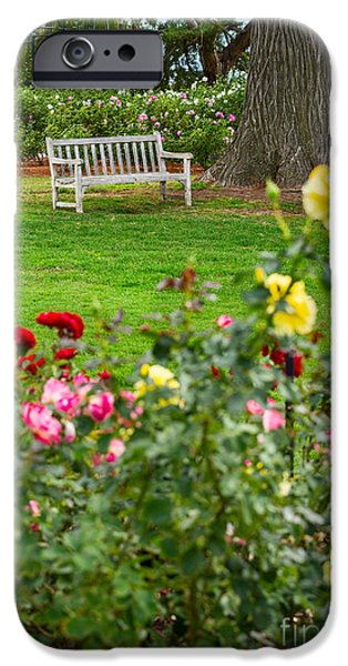 Rosaceae iPhone Cases - Rosy View - beautiful rose garden of the Huntington Library. iPhone Case by Jamie Pham
