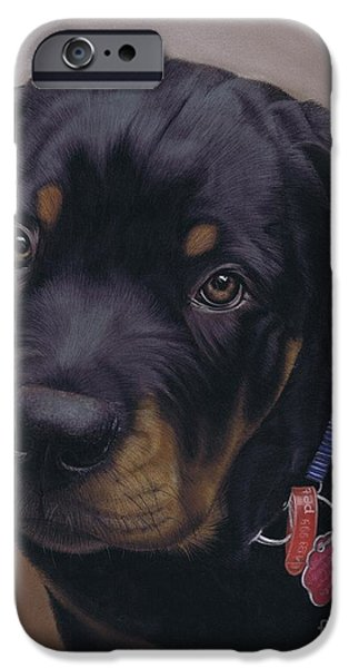 Rottweiler Dog iPhone Case by Karie-Ann Cooper