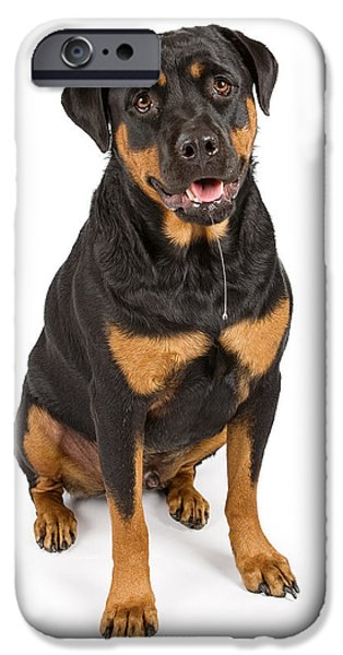 Spit iPhone Cases - Rottweiler dog with drool iPhone Case by Susan  Schmitz