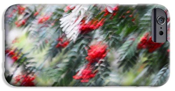 Abstract Movement Photographs iPhone Cases - Rowan Tree under the Silver Rain. Impressionism iPhone Case by Jenny Rainbow