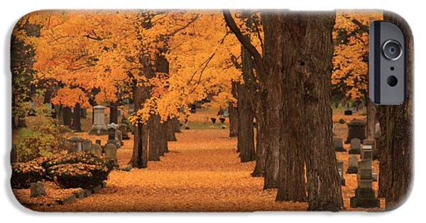 Cemetary iPhone Cases - Rows of Maples in orange iPhone Case by Jeff Folger