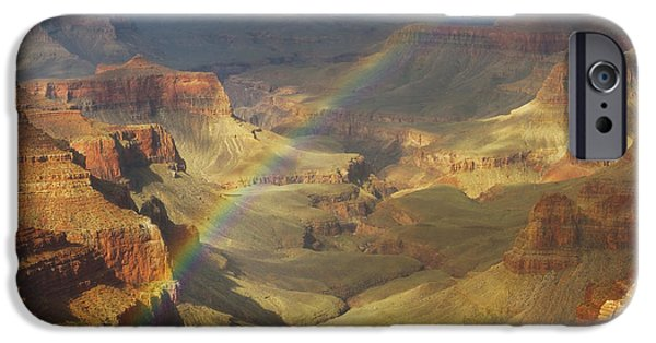 Peter Coskun iPhone Cases - Royal Rainbow iPhone Case by Peter Coskun