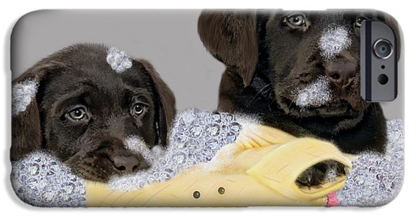 Chocolate Lab Digital Art iPhone Cases - Rub-a-dub-dub iPhone Case by Photoart BySaMi