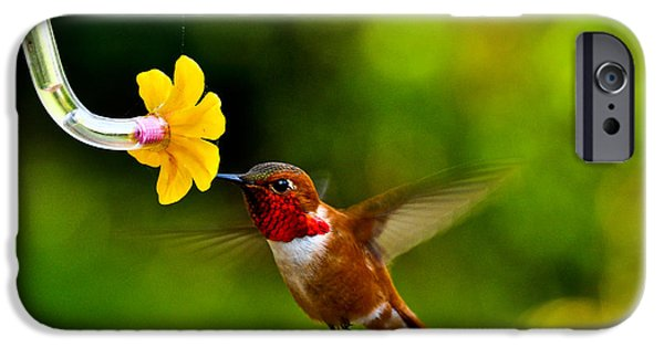 Ruby Garden Jewel iPhone Cases - Ruby comes for a drink iPhone Case by Bryan Hanson