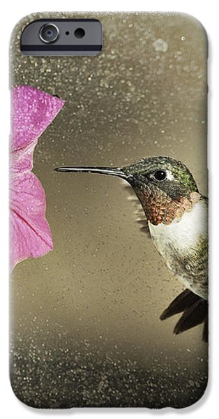 Ruby - D004190 iPhone Case by Daniel Dempster