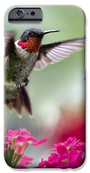 Ruby Garden Jewel iPhone Case by Christina Rollo