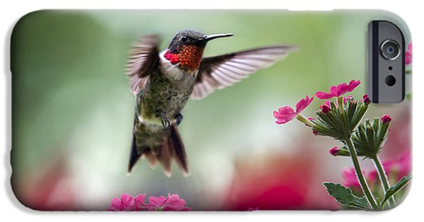 Fauna iPhone Cases - Ruby Garden Jewel iPhone Case by Christina Rollo