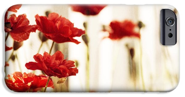 Blossoms iPhone Cases - Ruby reds iPhone Case by Priska Wettstein