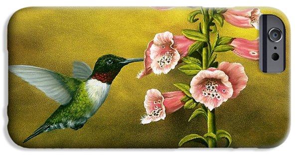Hummingbird iPhone Cases - Ruby Throated Hummingbird and Foxglove iPhone Case by Rick Bainbridge