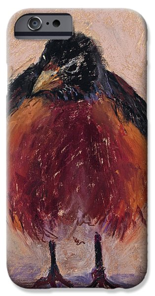 Baby Bird Pastels iPhone Cases - Ruffled Feathers iPhone Case by Billie Colson