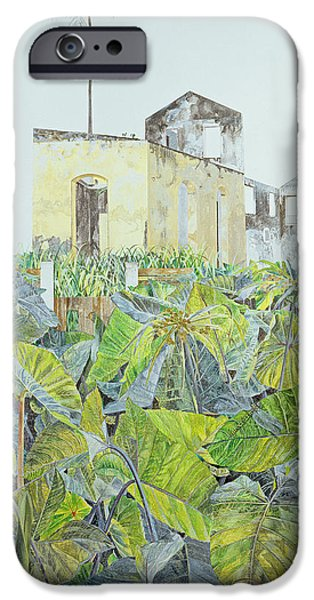 House iPhone Cases - Ruin In A Swamp, Haiti, 1971 Oil On Canvas iPhone Case by James Reeve